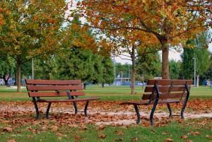 bench-1677958_1920